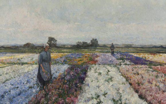 German Grobe Bloemenveld in volle bloei